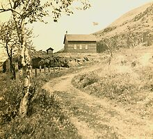 Schoolhouse at Kent, Oregon 1918 by OregonCurly