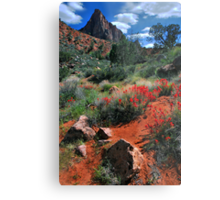 Trail to the Watchman Metal Print