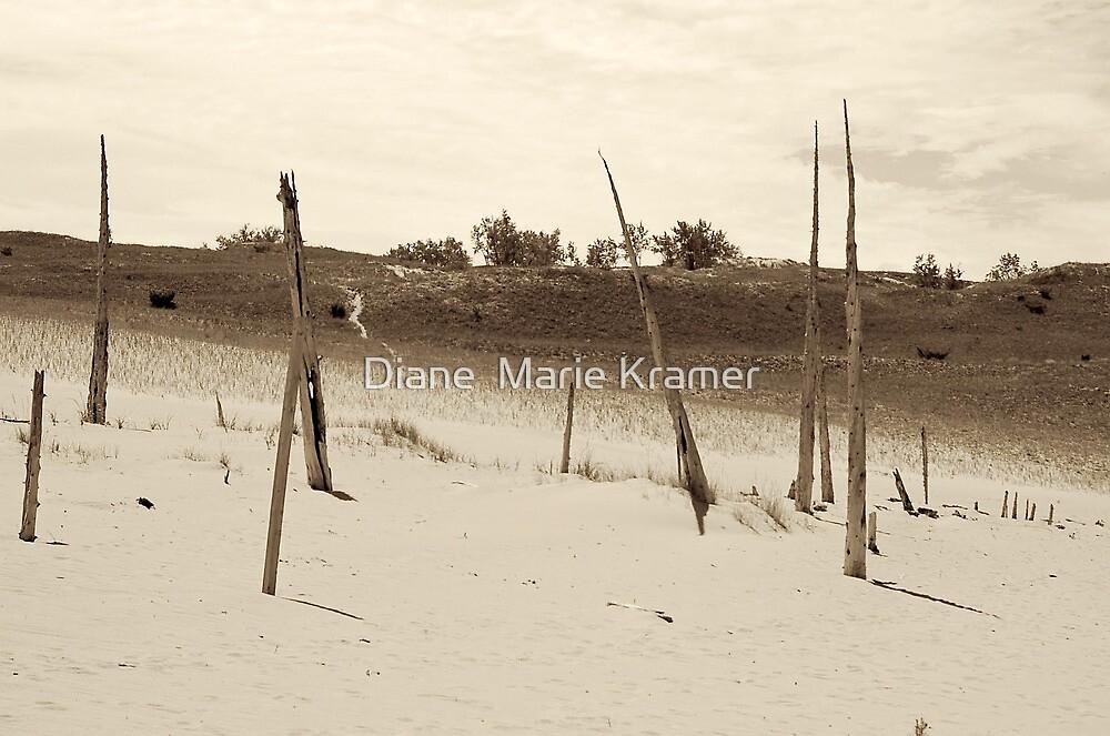 Ghost Trees by Diane  Kramer