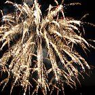 Firework by PhotosByTraci