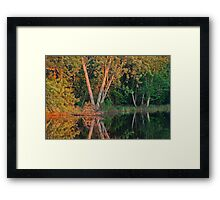 Rice River Reflections Framed Print