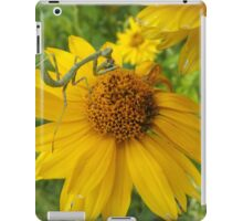 Insect and Flower Close-Up, Santa Fe, New Mexico iPad Case/Skin