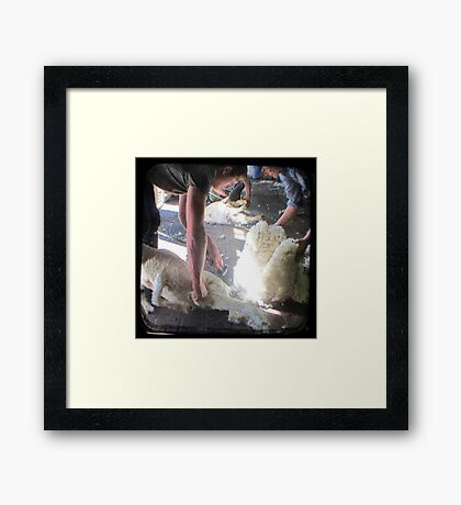 The Shearer & The Rouseabout - TTV Framed Print