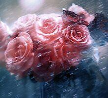 Rain Red Roses Nostalgia by JennyRainbow