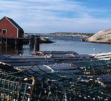 Peggy's Cove Inlet by Darren Spidell