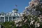 Lilacs & Grand Hotel by John Carpenter