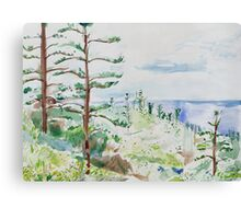 Norfolk Pines, Bucks Point Canvas Print