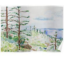 Norfolk Pines, Bucks Point Poster