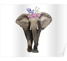 Flower Crown Elephant Poster