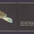 Turtie the Turtle - illustrations from a science based children's book by emilykperkin