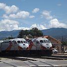 New Mexico Railrunner Locomotives, Santa Fe Railyard, Santa Fe, New Mexico  by lenspiro