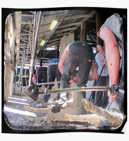 Heads Down, Bums Up - Shearing - TTV Poster