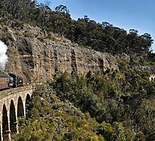 Zig Zag Railway | Lithgow | New South Wales | Australia by DavidIori