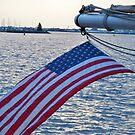 American Flag Flying by Diane Trummer Sullivan