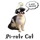 Pi-rate cat by bmgdesigns