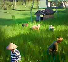 Balinese Rice Field Workers by Angie Muccillo