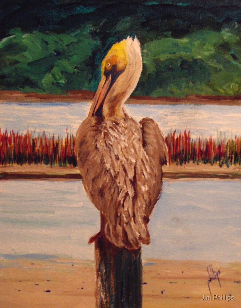 Pelican Watch by Jim Phillips