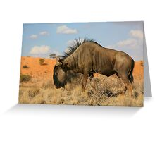 Put Your Shoulder Into It! Greeting Card