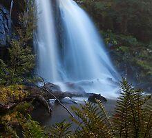 Hidden Falls Silk by tinnieopener