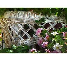 Aged Wicker Photographic Print