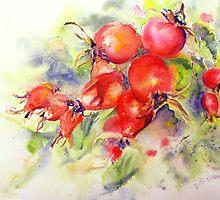 Rosehip Bounty by Ruth S Harris