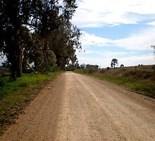 on the road again by Zaca
