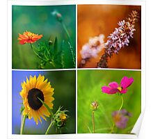 Four Square Flowers Poster