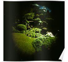 Fish Eye Botantic Gardens Poster