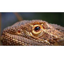Dragon eye Photographic Print