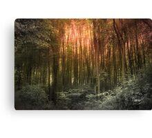 El Paradiso Mio - Awakening Canvas Print