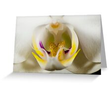 Orchidaceously Close Greeting Card