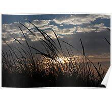 Sunset 3219 Poster