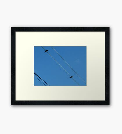 wire birds Framed Print