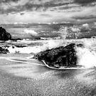 Splash (B&W) by artz-one