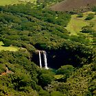 Wailua Waterfall in Kauai by ceemoon