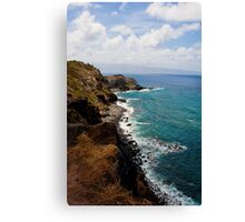 Hawaii Coastline Canvas Print