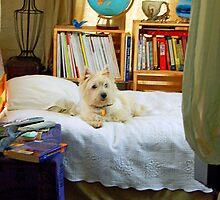 "A Dog named ""Sweetie"" by Diane  Kramer"