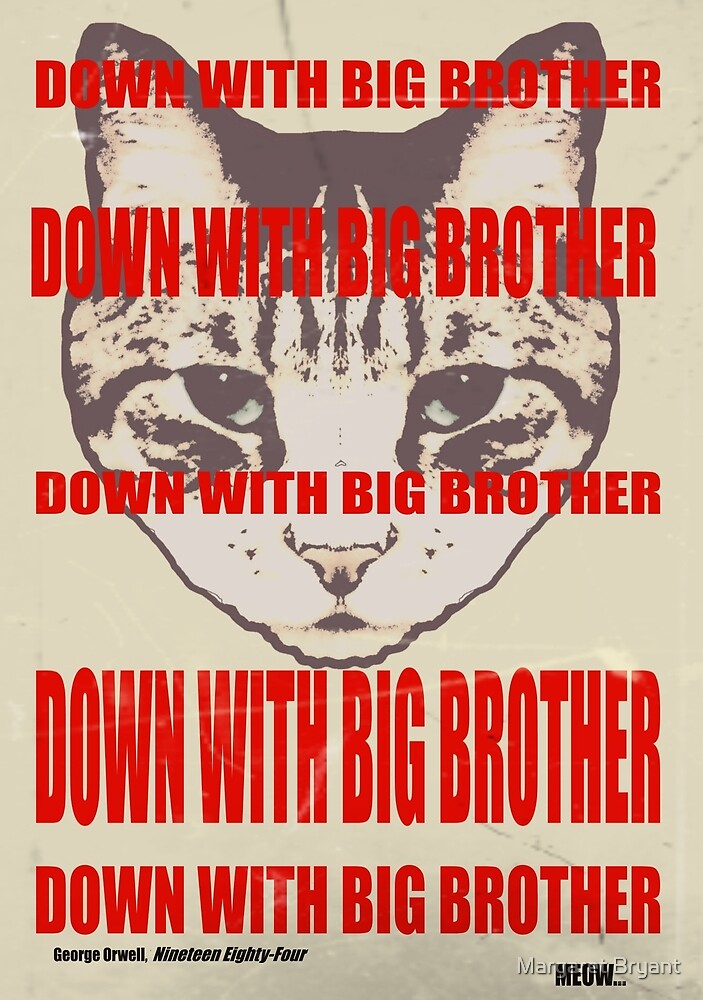 Orwellian Cat: Down With Big Brother by Margaret Bryant