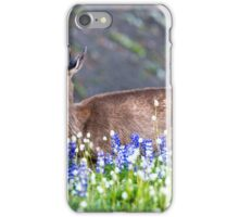 Blacktail Doe  iPhone Case/Skin