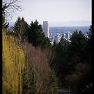 Portland City and Gardens by tntimages