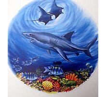 Great White Shark. Photographic Print