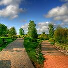 Choose Your Path in Life by Larry Trupp