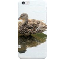 Northern Reflections iPhone Case/Skin