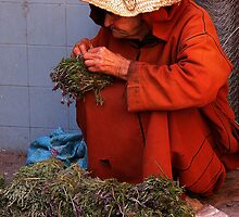 The Old Herb Seller. by romaro