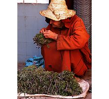 The Old Herb Seller. Photographic Print