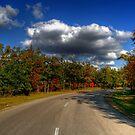 Birdshill Provincial Park by Larry Trupp