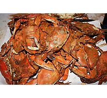 Crab Feast Photographic Print