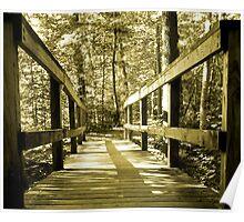 Footbridge to ?  Poster