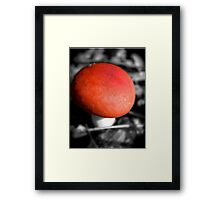 Forest Magic Framed Print