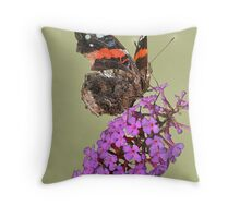 Thursty Red Admiral Throw Pillow